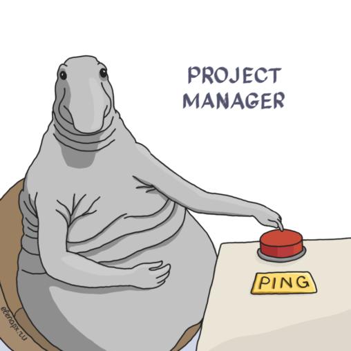 Менеджер проектов (ждун пингующий)