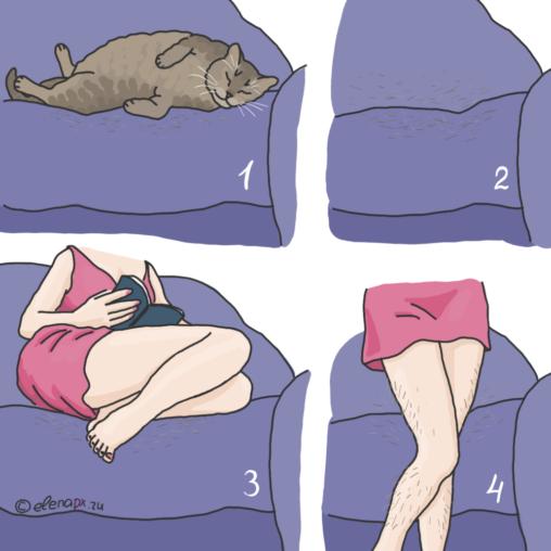 Место кота
