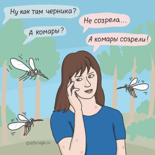 Комары созрели