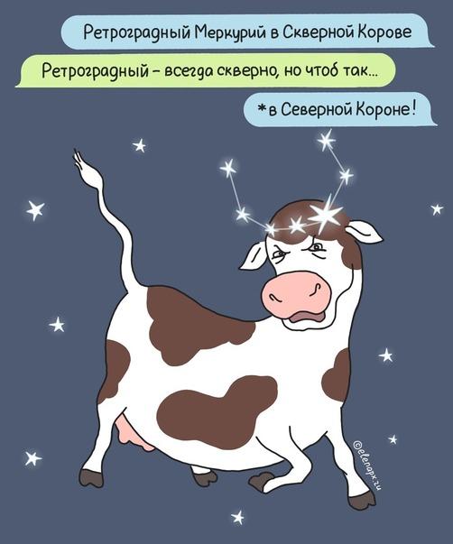Смешная картинка про астрологию