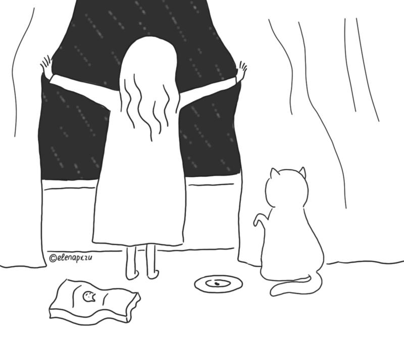 Картинки про котов: закончился корм
