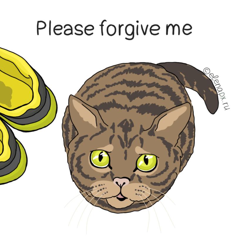Картинка с жалобным котиком