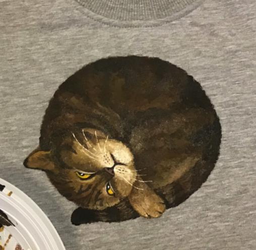 Котик - роспись свитшотов