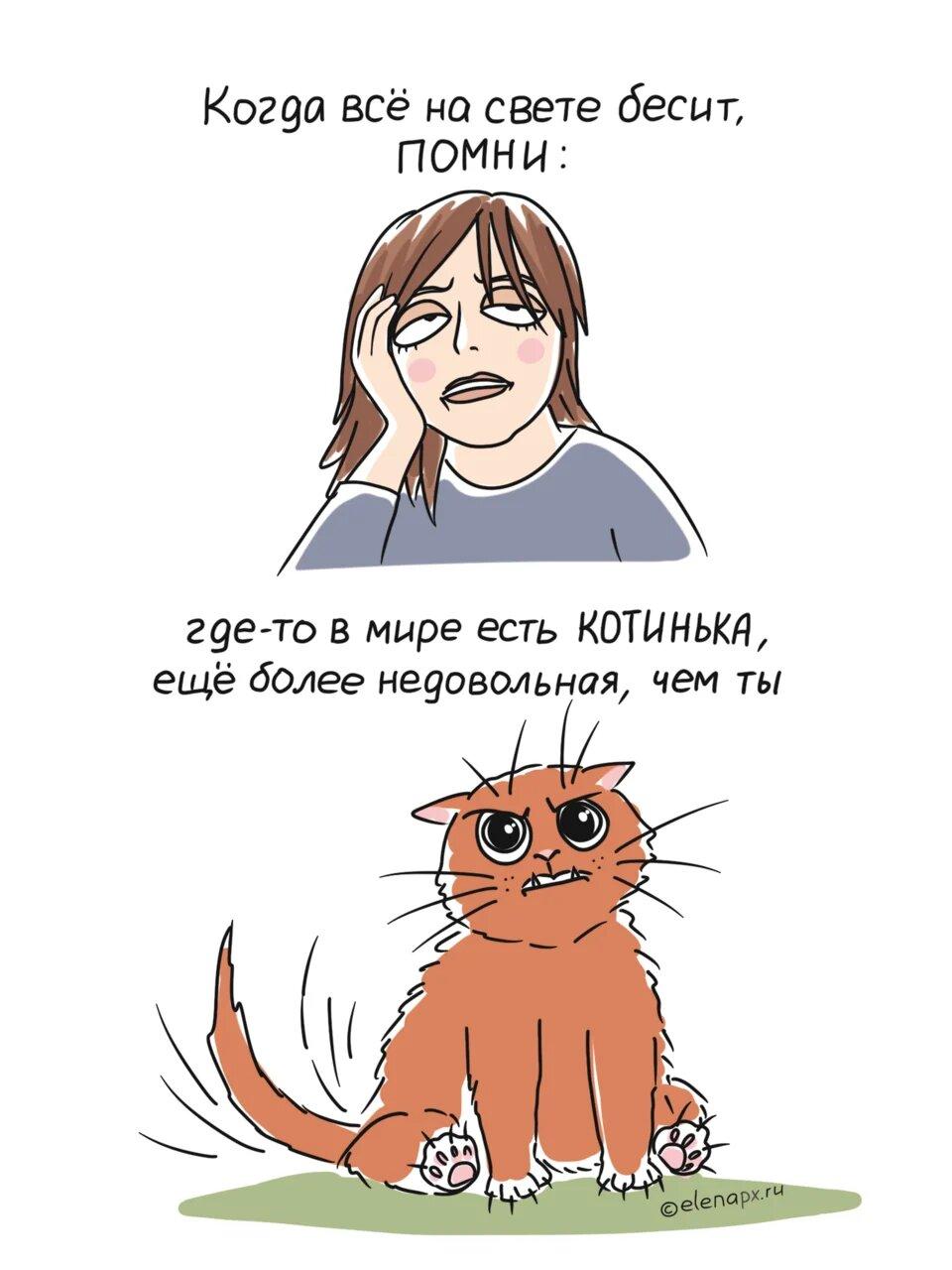 Всегда найдётся котинька, которой хуже
