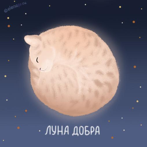 Луна добра - лунный кот