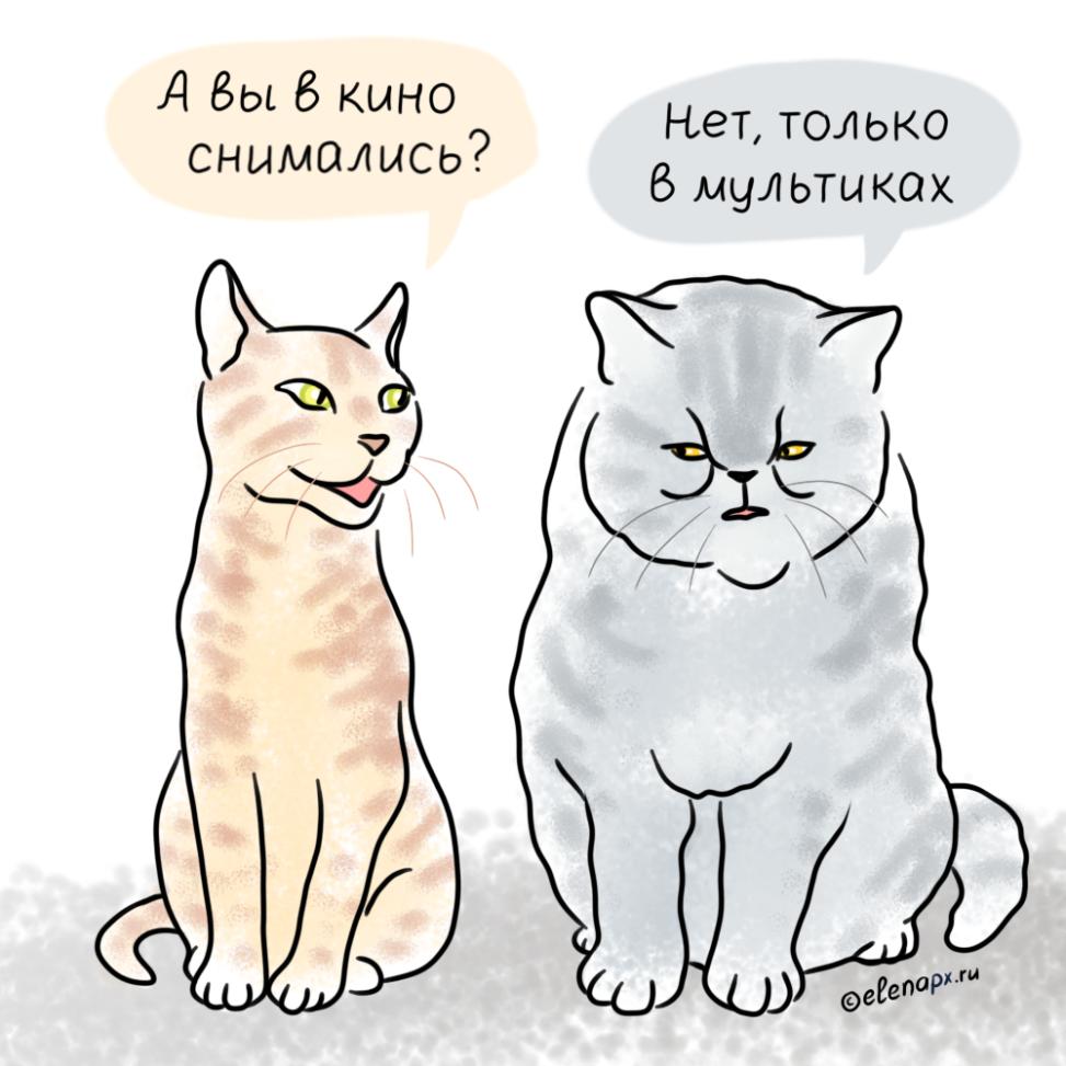 кот из мультика