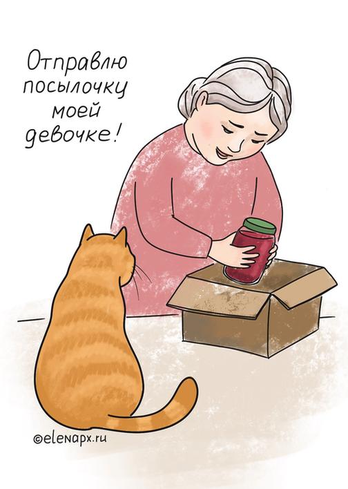 Шерстяная котинька: посылка