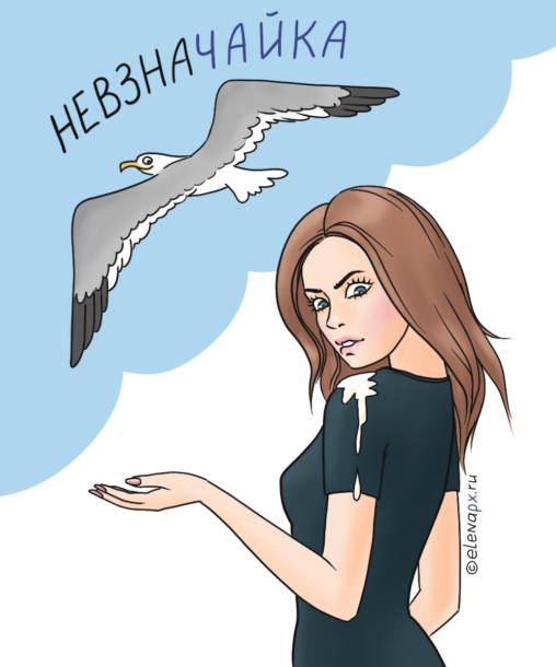 чайка-невзначайка