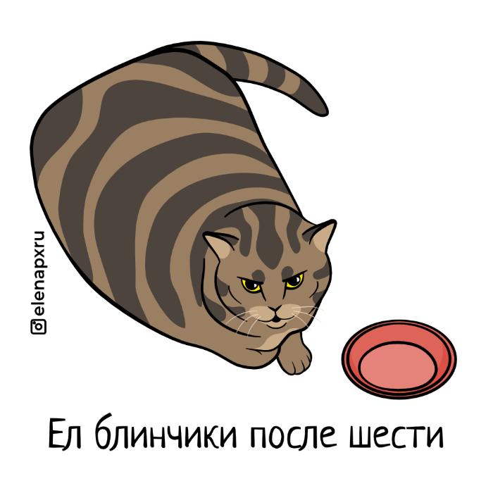 не все коту масленица